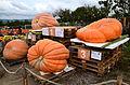 Jucker Farmart - Kürbisausstellung 2012-10-13 15-28-10.JPG