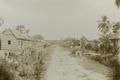 KITLV - 103913 - Plantation village in Surinam - circa 1900.tif