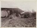 KITLV - 30213 - Kurkdjian, N.V. Photografisch Atelier - Soerabaja - Sugar estate in East Java - 1921.tif