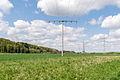 Kalletal - 2015-05-02 - LIP-013 Aberg-Herrengraben (11).jpg