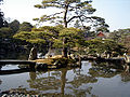Katsurarikyu01.jpg