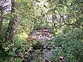 Kex Beck from the Footbridge - geograph.org.uk - 476932.jpg