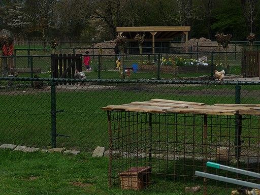Kinderboerderij Bossche Hoeve