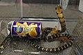 King cobra (37090441494).jpg