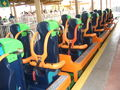 Kingda Ka train.jpg