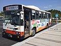 Kishiwada-City-Nankai-Bus001.jpg