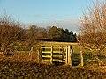 Kissing-gate in pastures, Chesham - geograph.org.uk - 1080160.jpg