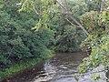 Knauthainer Elstermühlgraben Mündung.jpg