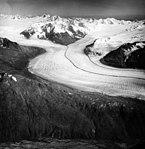 Knik Glacier, valley glacier with medial moraine, August 25, 1964 (GLACIERS 5011).jpg