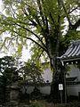 Komyo-ji-Minoh 02.jpg