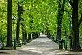 Krakow spring - panoramio (2).jpg