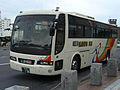 Kushirobus 196.JPG