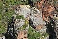 La Palma - San Andrés y Sauces - Barranco de la Fuente 02 ies.jpg
