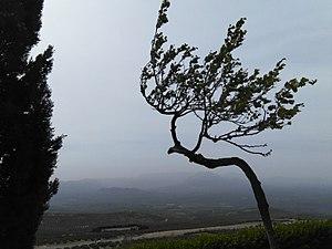 La sierra desde Baeza.jpg