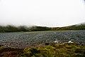 Lagoa do Landroal, vista parcial, concelho das Lajes do Pico, ilha do Pico, Açores, Portugal.JPG
