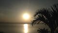 Lake Tana Bahirdar Ethiopia2.png