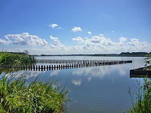 手賀沼 - Wikipedia