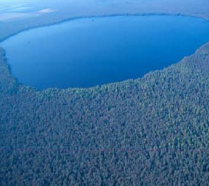 Lake Drummond - Lake Drummond is one of only two natural freshwater lakes in Virginia. Mountain Lake is the other.