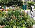 Landscaped roundabout 2.jpg