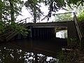 Landschaftsschutzgebiet Warmenau-Ufer LSG OS 00019 Datei 11.jpg