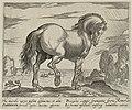 Landschap met paard uit Sardinië. NL-HlmNHA 1477 53011502.JPG