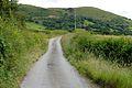 Lane to Coed-pryfydau farm - geograph.org.uk - 856747.jpg