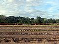 Langres - railway at the station 01.JPG