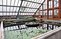 Large greenhouse at the Oude Hortus in Utrecht (front part).jpg