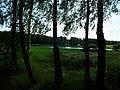 Lasek - panoramio.jpg