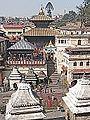 Le site sacré de Pashupatinath (Katmandou) (8630934152).jpg