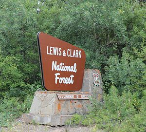 Lewis and Clark National Forest - The sign for the western unit of Lewis and Clark National Forest on U.S. Route 2