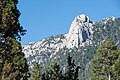 Lily Rock from Idyllwild CA.jpg