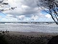 Lisi Jar, wyjście nad morzem, Jastrzębia Góra.jpg