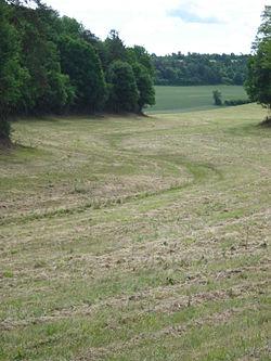 Lit sec du ruisseau l'Ouèvre en amont de Fresnes (Yonne, Fr).JPG