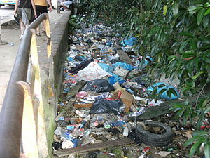 Litter in Paramaribo.