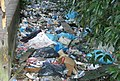 Litter in Paramaribo (cropped2).JPG