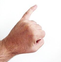 Little finger.jpg