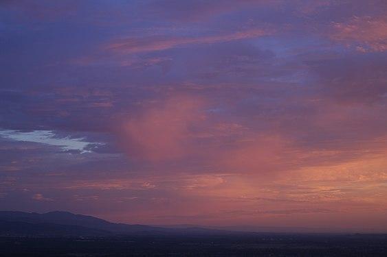Load-into-the-Pink-Cloud-of-Breisgau.jpg
