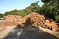 Logging - geograph.org.uk - 547155.jpg