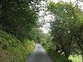 Lon Glasgwm. The Glasgwm road - geograph.org.uk - 556850.jpg