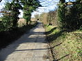 Looking W along lane from Frogham - geograph.org.uk - 311204.jpg