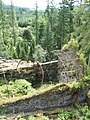 Looking down on the ruined Victorian Fernery - geograph.org.uk - 924269.jpg