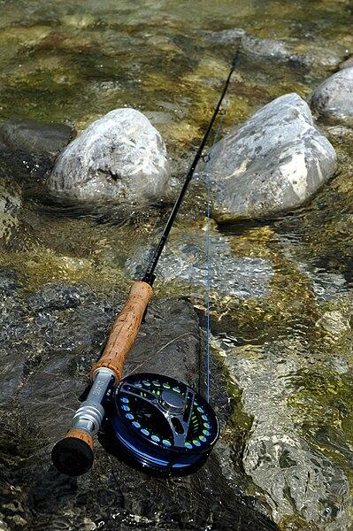 łowienie ryb na grunt
