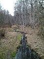 Los river after pond.jpg