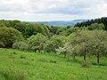 Losheim am See - panoramio (5).jpg