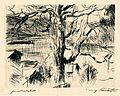 Lovis Corinth Baum am Walchensee.jpg
