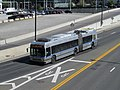 MBTA route SL1 bus on Massport Haul Road, September 2015.JPG