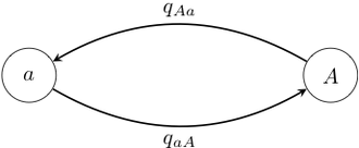 Ancestral reconstruction - Figure 2.  A general two-state Markov chain representing the rate of jumps from allele a to allele A. The different types of jumps are allowed to have different rates.