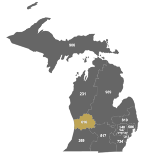 Area code 616 - Map of area code 616 in Michigan.