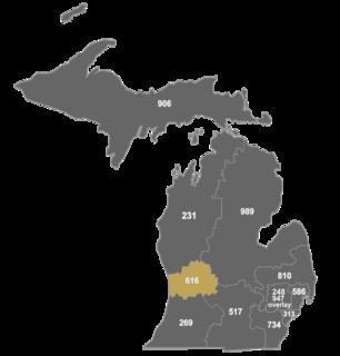 Area code 616
